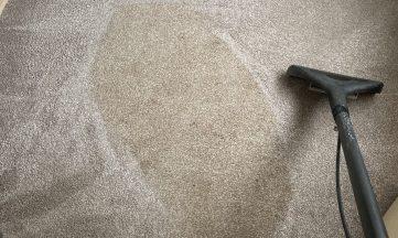 wand carpet clean